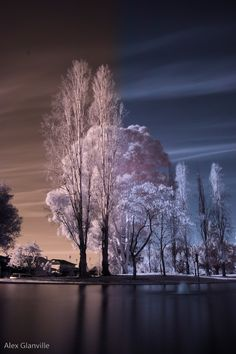 InfraRed Photography Action by =comicidiot on deviantART