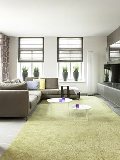 Modern Family Room Rug Design, Pictures, Remodel, Decor and Ideas - page 2
