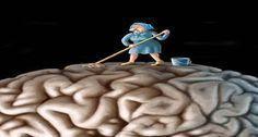 AGYTAKARÍTÁS – 8 DOLOG, AMIT PUCOLJ KI AZ ÉLETEDBŐL, ÉS BOLDOG LESZEL! ~ Az… Christmas Ornaments, Disney Princess, Holiday Decor, Disney Characters, Brain, Illustrations, Google Search, Health, People