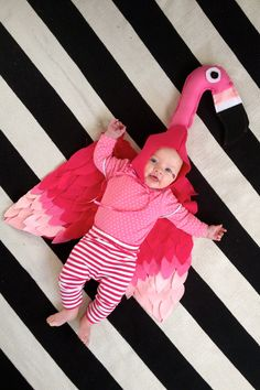 Flamingo costumes for a little girl. This awesome one was made by Elise Blaha :) Ain't it too cute for words?