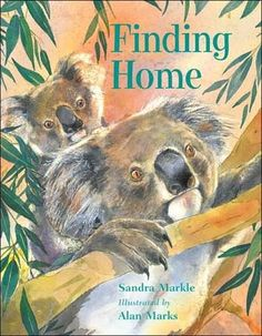 2009 - Finding Home by Sandra Markle - A koala mother faces two challenges: protecting herself and her joey from the raging bushfire, and finding food after their home range is destroyed, an option that ricks contact with humans. Nonfiction Books For Kids, Aboriginal Culture, My Father's World, New Children's Books, Award Winning Books, Animal Habitats, Reading Rainbow, Australian Animals, Animal Books