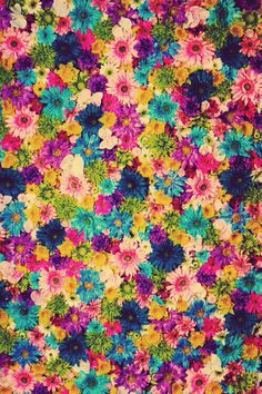 Flores, colores