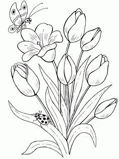 Тюльпан раскраска картинка