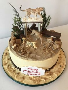 A butter cream wild life cake Cheetah Birthday Cakes, Cheetah Cakes, Safari Birthday Cakes, Leopard Cake, 8th Birthday Cake, Safari Cakes, Leopard Birthday Parties, Animal Cakes For Kids, Zoo Animal Cakes