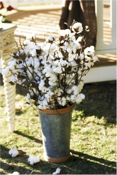 Cotton Plants for Floral Arrangements arrang idea, amber, bouquets, front doors, aisle markers, cotton plant, table centerpieces, dream houses, flower