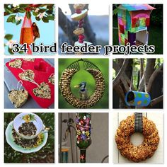 34 bird feeder projects - Life List by Melinda Copp