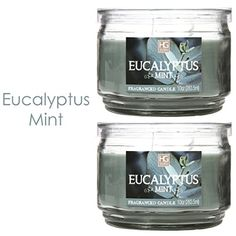 Hosley Set of 2 Eucalyptus Mint Highly Scented 2 Wick 10 Oz wax Jar Candle Ideal votive GIFT for party favor weddings Spa Reiki Meditation Bathroom settings >>> Read more reviews of the product by visiting the link on the image.Note:It is affiliate link to Amazon.