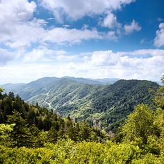 We love these beautiful Smoky Mountains