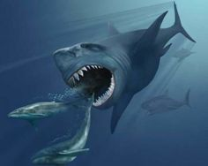 Carcharocles megalodon. This creature was a 52-foot shark with jaws big enough to swallow a rhinoceros. It lived about 25 to 1.5 million yea...