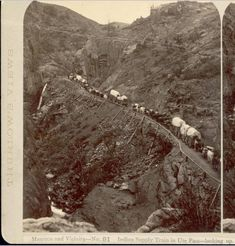~Ute Pass, CO. ~ 1878 Oxen and horse drawn covered wagons travel up Ute Pass in El Paso County, Colorado. The dirt road is supported by a rock wall reinforced with a log pole guardrail. Shows Rainbow Falls, a waterfall on Fountain Creek, rock canyon walls and mountains.