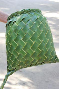Coconut palm weaving taro basket Rosalindentree