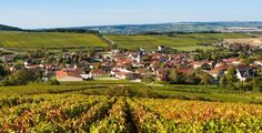 Champagne - A mosaic of forests, vineyards and rolling cornfields beneath expansive skies – home to the eponymous sparkling wine that all the world knows and craves