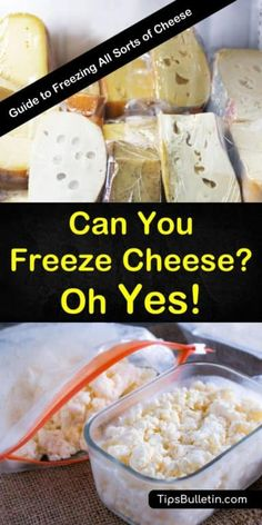 Can you freeze cheese? Learn how to freeze cheese to extend its shelf life. With tips and for all kinds of cheese, including hard, semi-hard, soft cheese and cheese slices, you can keep your cheese for longer and still use it in all your favorite recipes. Freezing Cheese, Freezing Milk, Gourmet Recipes, Real Food Recipes, Food Tips, Ultimate Grilled Cheese, Freeze Drying Food, Freeze Dried Meals, Waffle Iron Recipes