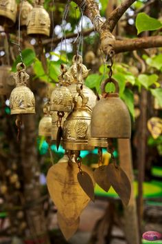 Bells for Buddha by Dave Smith