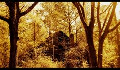 elkmont ghost town photography from sage imagination  cher is back on the charts w s world gone the windphoto essayghost