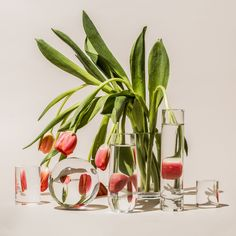 Suzanne Saroff imbues simple still life photographs with a playful sense of Surrealism Glass Photography, Modern Photography, Artistic Photography, Life Photography, Reflection Photography, Photography Aesthetic, Abstract Photography, Photography Ideas, Faux Flowers