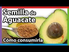 Semilla de AGUACATE 🥑 Propiedades, Beneficios y cómo consumirla 💚 - YouTube