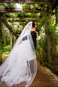 Gorgeous shot of a bride and groom at the Cape Fear Botanical Gardens. www.carolinamediastar.com