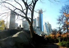One Day in New York City for Families - Let's Roll, a travel blog by FlightNetwork.com