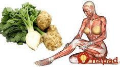 Toto sa stane s vaším telom, keď začnete jesť obyčajný zeler: Začnite s tým už dnes + najlepšie recepty! Pickles, Cucumber, Smoothie, Good Food, Recipes, Smoothies, Ripped Recipes, Pickle