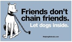 Friends don't chain friends. Let dogs inside. No animal should have to spend their life at the end of a chain!