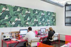 #escritorio #papeldeparede #colorido
