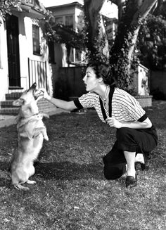 Frank Sinatra gave Ava Gardner her first corgi, Rags, as a birthday present on Christmas Eve in 1953 and after that she was never without a corgi.
