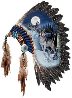 Beautiful Native American Headdress.