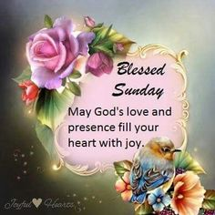182 Best Sunday Blessings Images Happy Sunday Morning Good Sunday