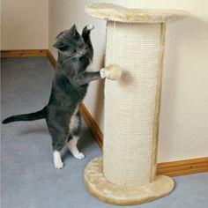 1000 images about tiragraffi on pinterest cat for Tiragraffi ikea