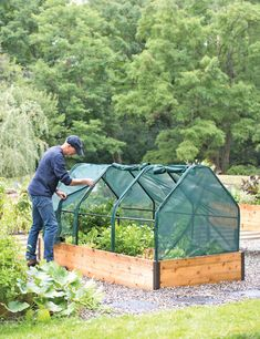 Plant Protection Tent, x - GARDENER'S SUPPLY CO. You are in the right place about Gardening Supplies projects Here we offer you the most beautiful pictures about the Gardening Supplies Garden Netting, Covered Garden, Garden Boxes, Garden Box Plans, Garden Seeds, Winter Garden, Raised Beds, Garden Planning, Backyard Landscaping