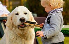 """Leggi sul nostro #petblog #record l'articolo """"Cane & bambini: crescita felice"""" Scoprirete 10 motivi per far crescere vostro figlio a fianco di un cane!"""