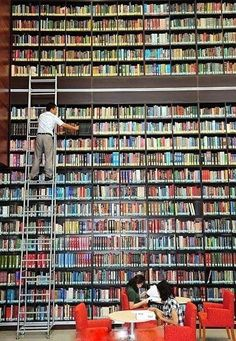 Amazing bookshelves -- Library of the College of Medicine at Keimyung University in Daegu, South Korea. Beautiful Library, Dream Library, Daegu, I Love Books, Books To Read, Reading Books, Library Bookshelves, Bookcases, World Library