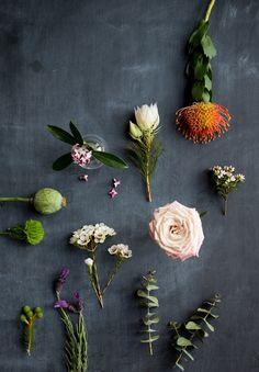spring florals.