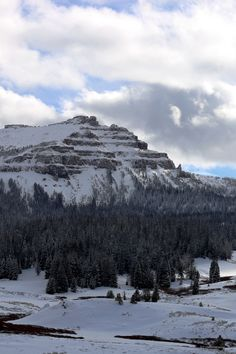 riverwindphotography:    Winter Begins in the Winds: southern Absaroka Mountains Wyoming  by riverwindphotography November 2016   from  The REZs EDGE - Destruction & Redemption by author/writer Brad Jensen  FULL CHAPTERs PRE-RELEASED (Read 4 Free - click link here) http://bradjensen.wix.com/authorbradjensen  Please REBLOG/SHARE if you dig it Thanks Folks!  Watch for the Book release date here: http://authorbradjensen.tumblr.com/ or here: http://www.facebook.com/bradjensenauthor/ or here…