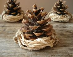 Natural Pinecone Nest Ornament Set of 3 Autumn Wedding by VENDecor, $9.00