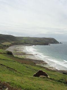 Baie d'Ecalgrain GR 223 (Manche)