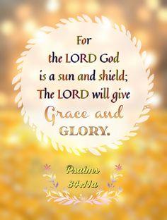 Salmos 84:11-12 Porque sol y escudo es Jehová Dios; Gracia y gloria dará Jehová. No quitará el bien a los que andan en integridad. Jehová de los ejércitos, Dichoso el hombre que en ti confía. ♔