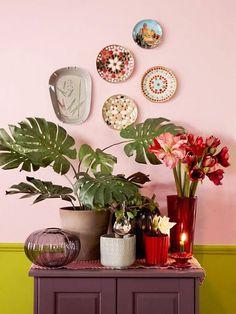 Pink wall Plants - Aprenda a fazer Half Painted Walls paredes pintadas pela metade. Teller An Der Wand, Estilo Kitsch, Murs Roses, Deco Rose, Deco Addict, Deco Originale, Wall Decor, Room Decor, Wall Art