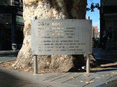 De Dikke Boom, Gouvernementsplein, met het gedicht van Bert Bevers aan de voet