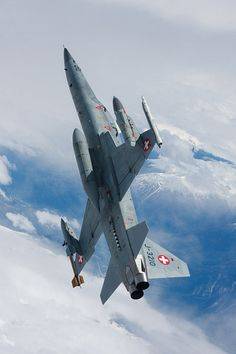 Fighter Aircraft, Fighter Jets, Swiss Air, Old Planes, Tiger Ii, Red Dot Design, Freedom Fighters, Touch Of Gold, Military Aircraft