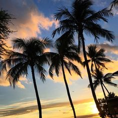 Hawaiian sunsets.
