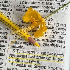 Palavra de Deus.  Luz para vida