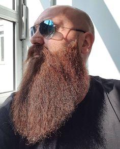 The Beard & The Beautiful Crazy Beard, Bald With Beard, Bald Men, Hairy Men, Bearded Men, Badass Beard, Epic Beard, Grey Beards, Long Beards