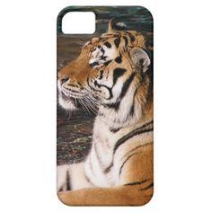 Tiger Portrait iPhone 5 Case http://www.zazzle.com/tiger_portrait_iphone_5_case-179567692513358076?rf=238194283948490074&tc=pfz
