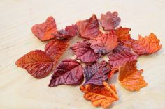 Fondant Fall Leaves MINI - qty 24- Fall leaves great for cupcakes, birthday partys, wedding cakes, wedding showers. $19.20, via Etsy.