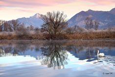 """ph. © Marco Sassone """" Nel silenzio di una fredda alba."""""""