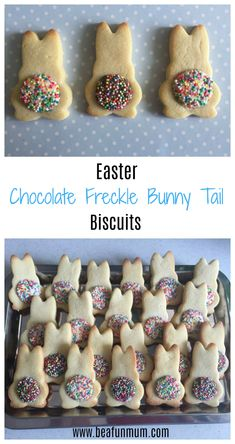 aster Chocolate Freckle Bunny Tail Biscuits