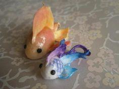 cute litlle fish