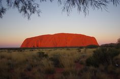 Probably Australia's most iconic natural scene. The big red rock Uluru glowing in the evening light